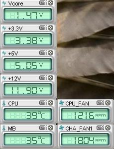 ASUS probe readings.JPG